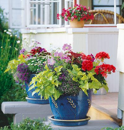 hoa-dep-ben-hien-nha-41 Đẹp với hoa và nắng ngoài ban công