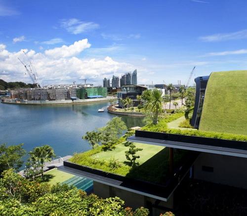 24 DOOL110824ThangTGKT02 Mái nhà xanh độc đáo phong cách Singapore