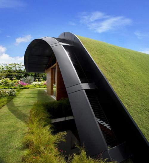 24 DOOL110824ThangTGKT03 Mái nhà xanh độc đáo phong cách Singapore