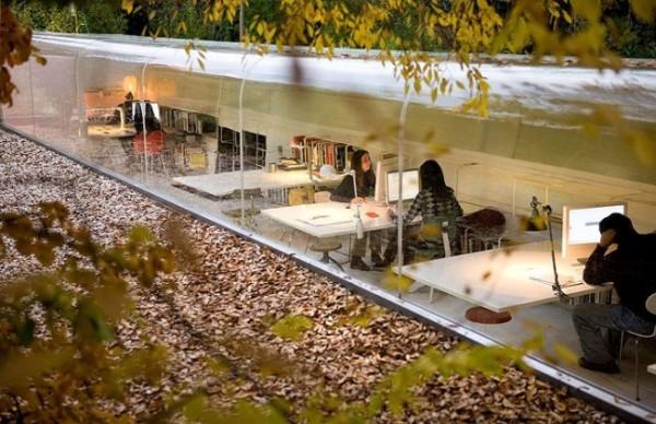 van-phong-trong-rung-9 Văn phòng l� m việc đẹp ngỡ ng� ng giữa rừng cây