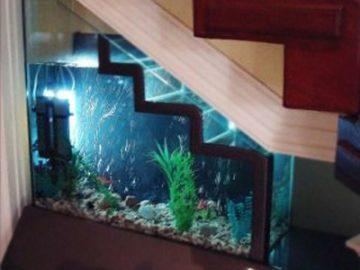 Có nên đặt bể cá ở gầm cầu thang